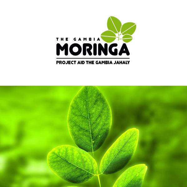 icreative-com-ua_moringa_logo
